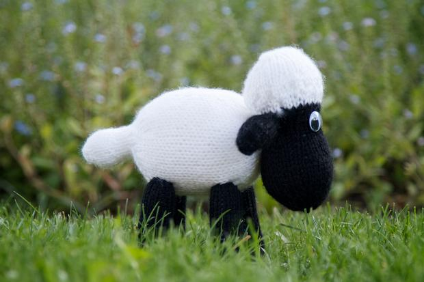 Wellington the Sheep - Knitting Patterns and Crochet Patterns from KnitPicks.com