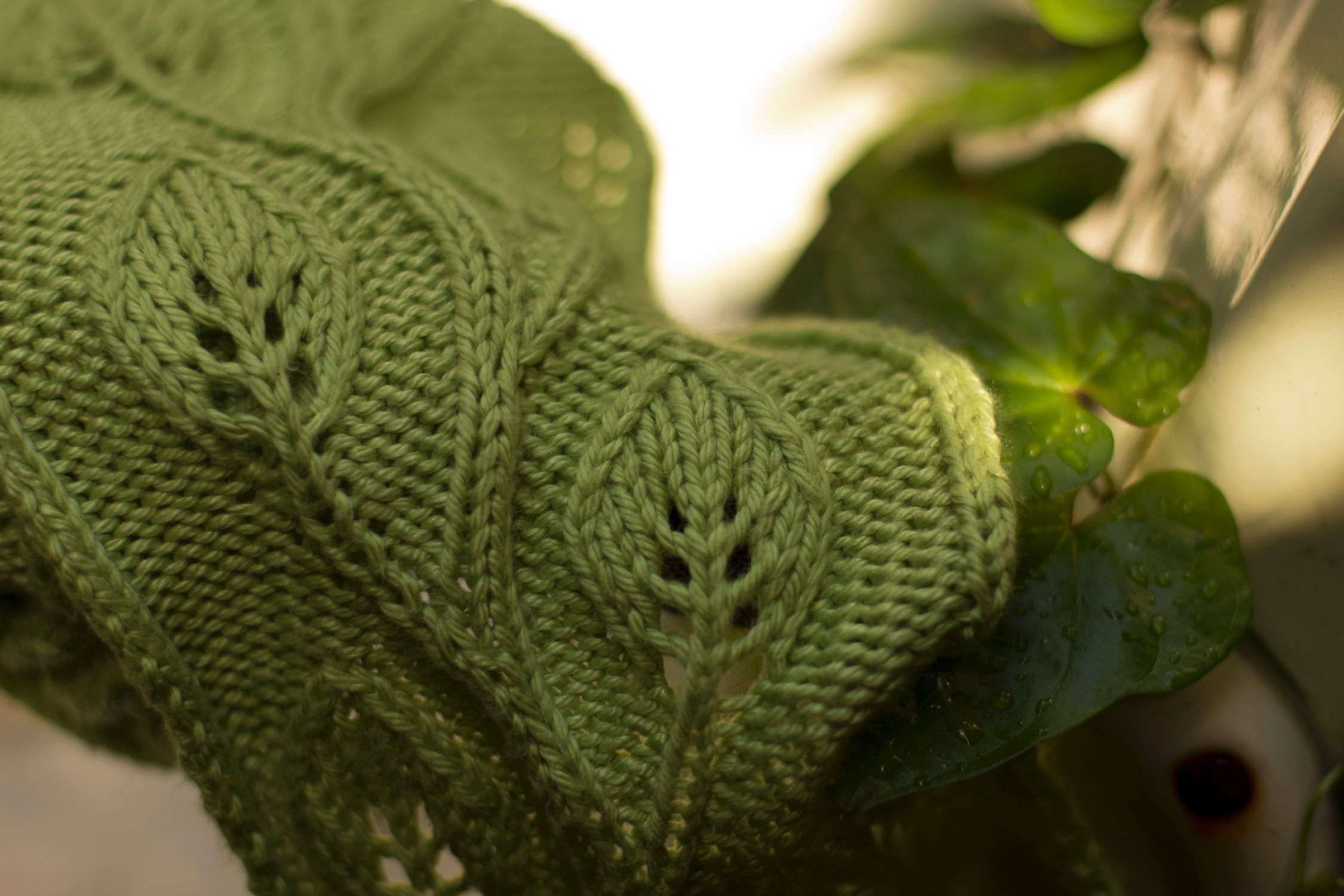 How To Knit A Leaf Pattern : Daphne Scarf - Knitting Patterns and Crochet Patterns from KnitPicks.com
