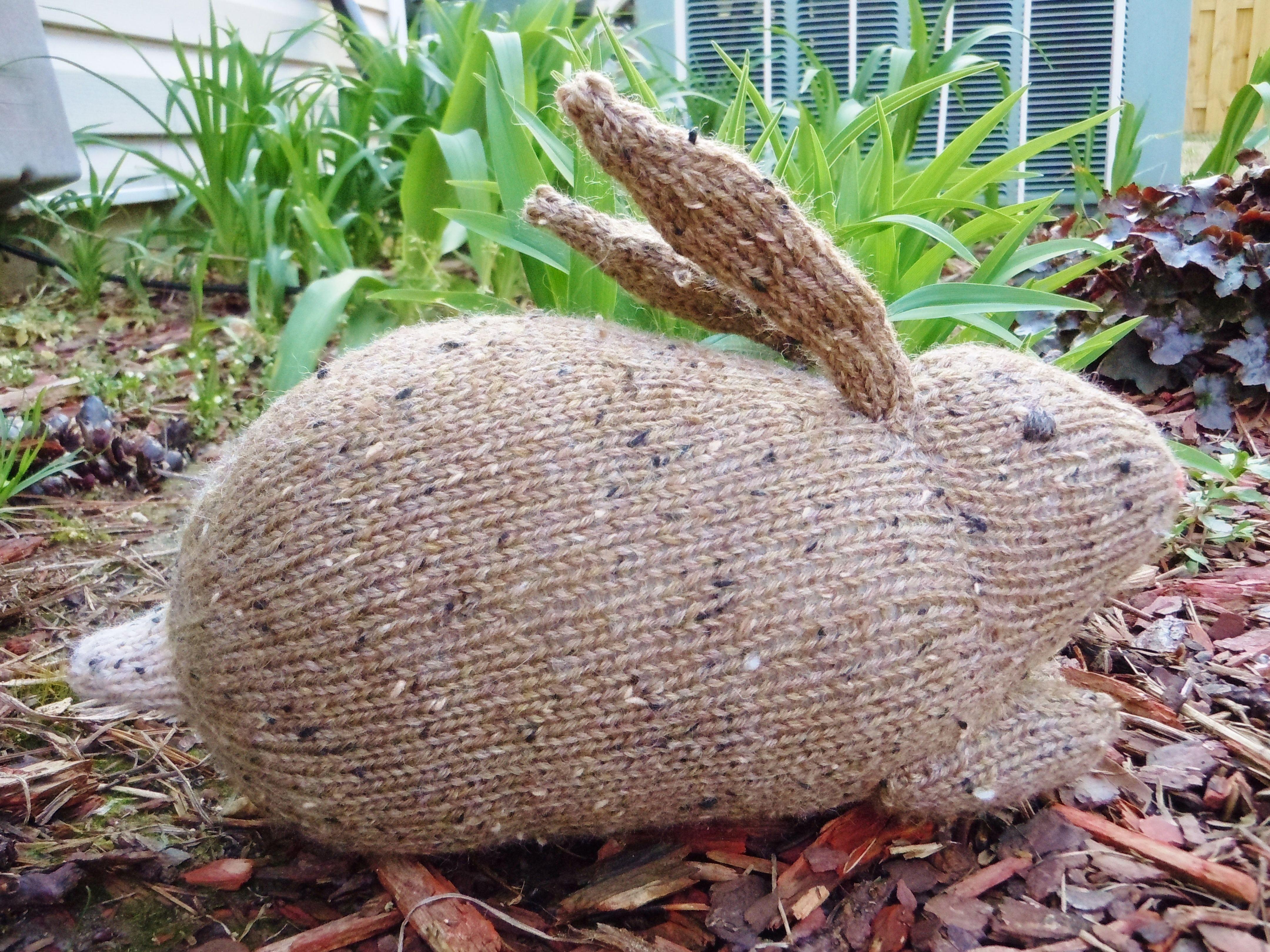 Beret Hat Knitting Pattern : Henrys Rabbit - Knitting Patterns and Crochet Patterns from KnitPicks.com