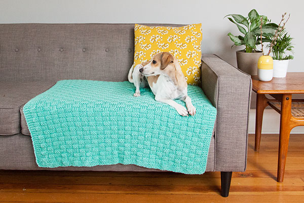 Comfort Knit Pet Blanket - Free Knitting Patterns
