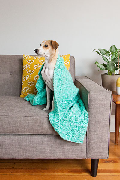 Knitting Pattern For Comfort Blanket : Comfort Knit Pet Blanket - Knitting Patterns and Crochet ...