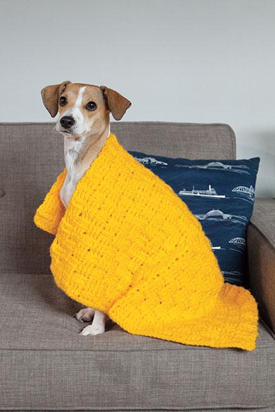 Pet Knitting Patterns : Comfort Crochet Pet Blanket - Knitting Patterns and Crochet Patterns from Kni...
