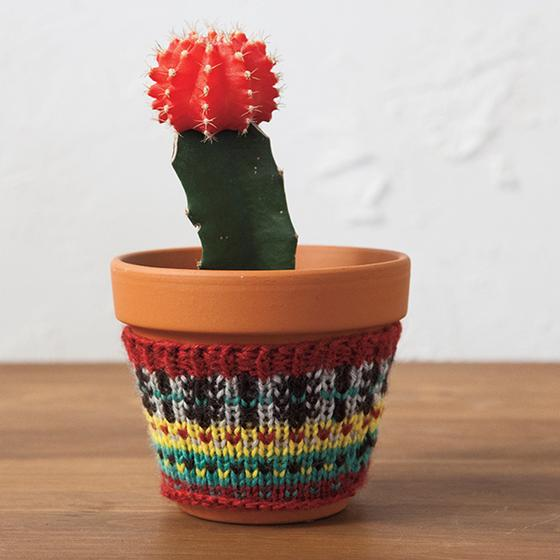 Plant Cozies - Free Knitting pattern for plant cozies