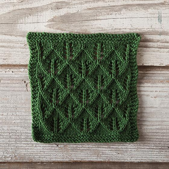Free Knitting Patterns Christmas Dishcloth : Tree Hunting Dishcloth - Knitting Patterns and Crochet Patterns from KnitPick...