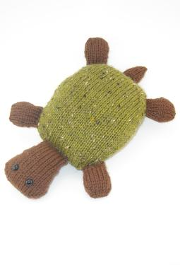 Molly the Traveling Turtle