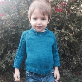 Sir Isaac Fancysleeves Toddler/Child Pullover