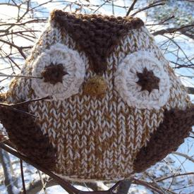 Helga, The Hexagon Owl