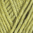 Green Tea Heather in Wool of the Andes Sport Yarn