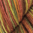 Hayride in Stroll Hand Painted Sock Yarn