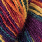 County Fair in Stroll Hand Painted Sock Yarn