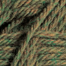 Cilantro Heather in Wool of the Andes Worsted Yarn