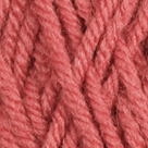 Coral in Brava Worsted Yarn
