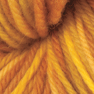 Goldrush in Swish Tonal Yarn