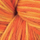 Harvest in Swish Tonal Yarn