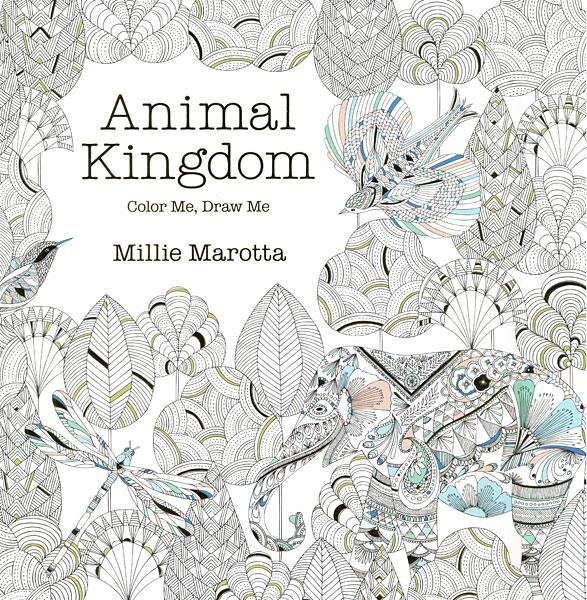 Home Books Coloring Animal Kingdom Book