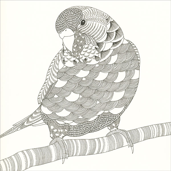 Animal Kingdom Coloring Book from KnitPicks.com Knitting by ...
