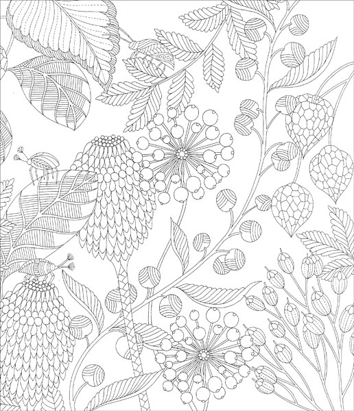 Tropical World Coloring Book Review : Tropical World Coloring Book from KnitPicks.com Knitting by Millie Marotta On Sale