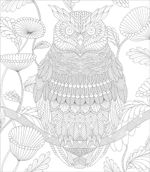 Home Kits Tropical World Coloring Book