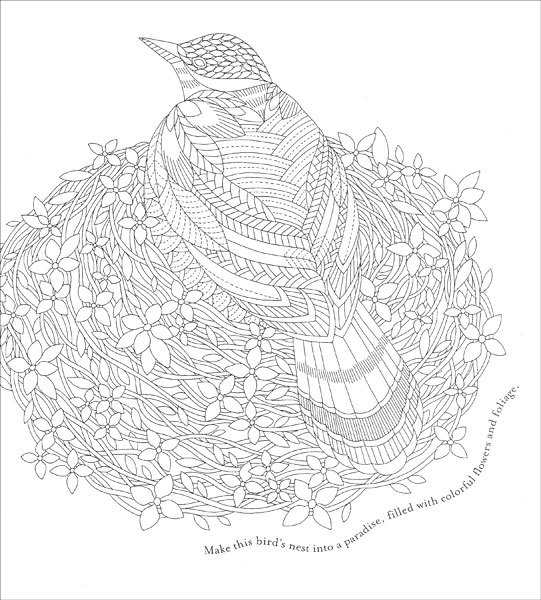 Tropical World Coloring Book Tropical World Coloring Book