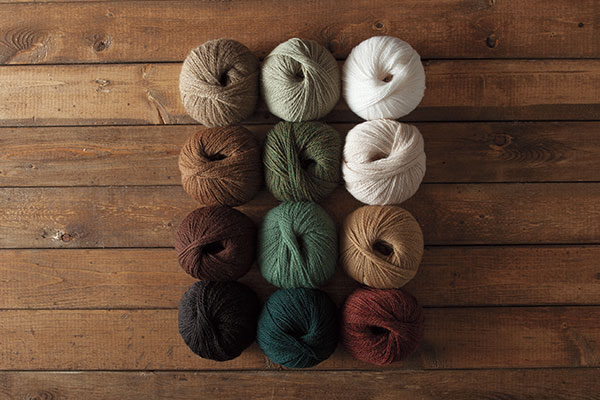 The Woodland Cabin Palette Yarn Sampler