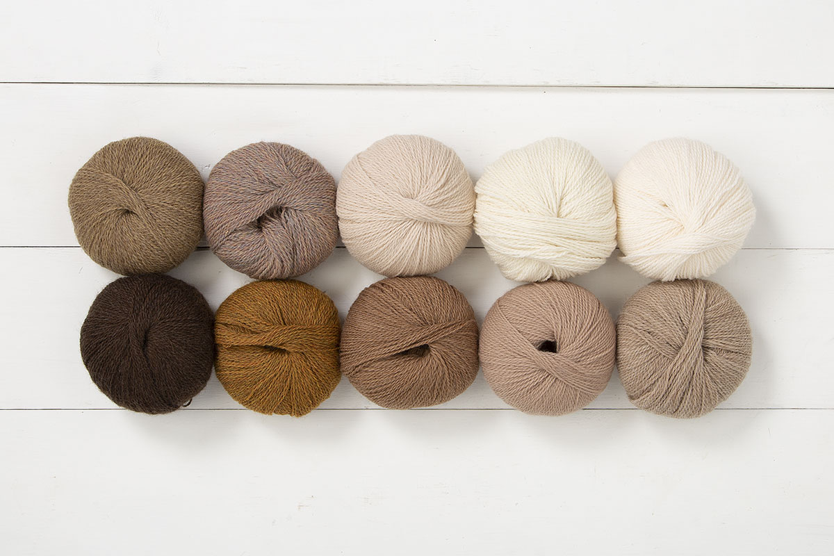 The Coffee Shop Palette Yarn Sampler