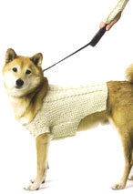 Irish Fisher Dog and Friend Pattern Pattern