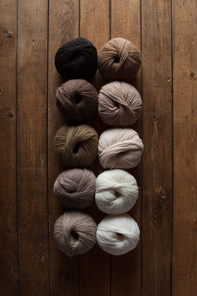 Coffee Shop Yarn Sampler