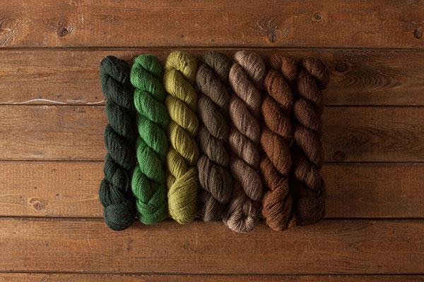 Steamer Trunk Alpaca Cloud Sampler