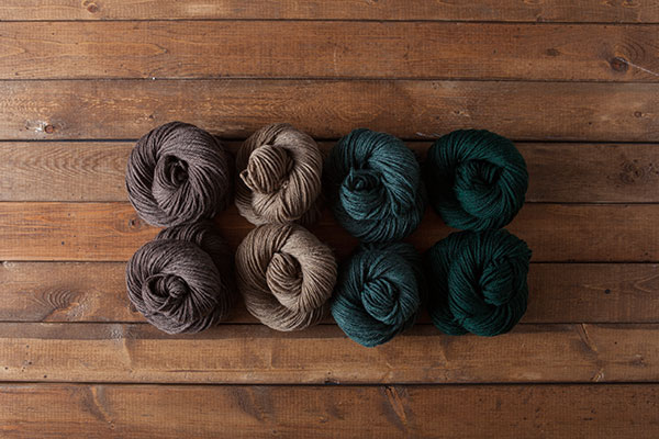Hillside - WOTA Superwash Bulky Sampler