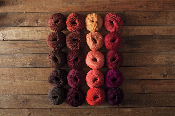 The Fire Opal Palette Yarn Sampler