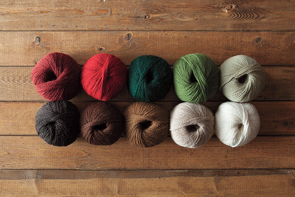 The Traditional Christmas Palette Yarn Sampler