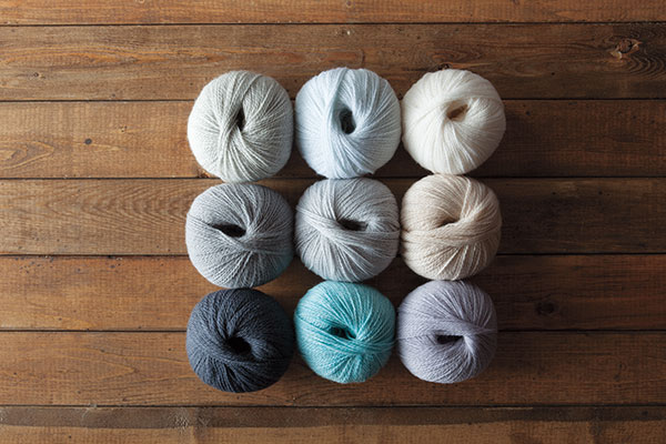 The Winter Frost Palette Yarn Sampler