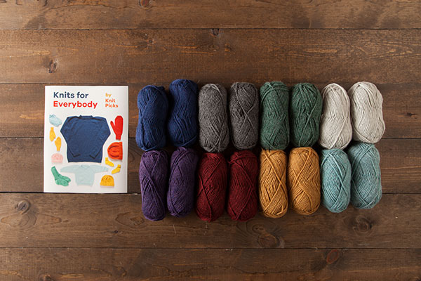 Knits for Everybody Kit - Wool of the Andes Superwash