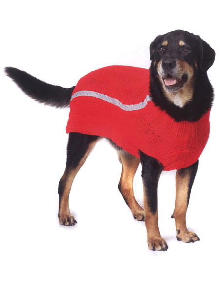 Nightwalker Sport Dog Coat Pattern Knitting Patterns And Crochet