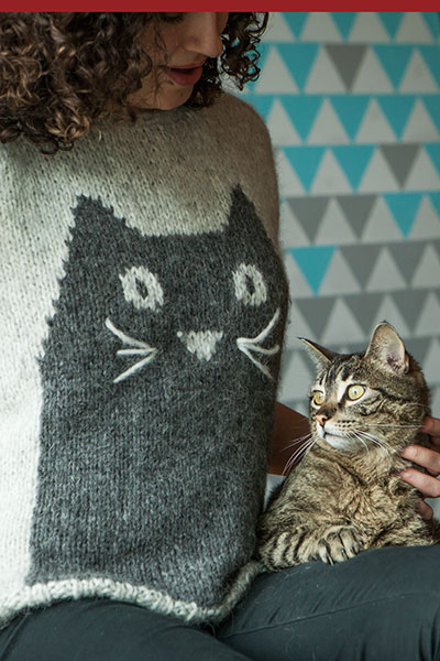 Professor Meow Sweater Knitting Patterns And Crochet Patterns From
