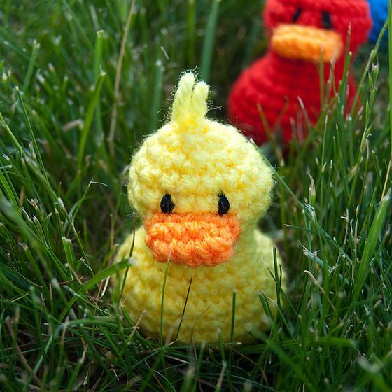 Lil Ducks Knitting Patterns And Crochet Patterns From Knitpicks