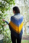 Koloreak Shawl Pattern Kit
