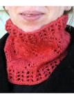 Winter Vine Cowl Pattern