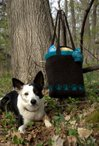 Puppy Trails Tote Pattern
