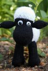 Wellington the Sheep