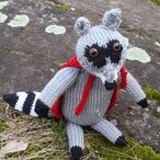 Roland the Raccoon Pattern