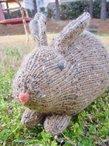 Henry's Rabbit
