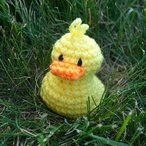 Lil' Ducks Crochet Pattern