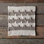 Etoile Dishcloth Pattern (free download)
