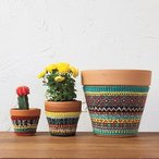 Plant Cozies Pattern