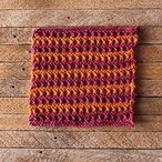 Tropical Vacation Dishcloth