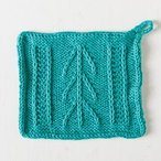 Desert Arrow Dishcloth