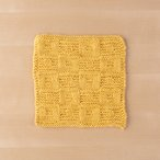 Bandera Dishcloth