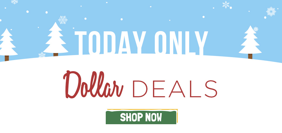 Today Only! Dollar Books and Yarn