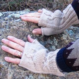 Michilimackinac (Big Turtle) Hand Warmers